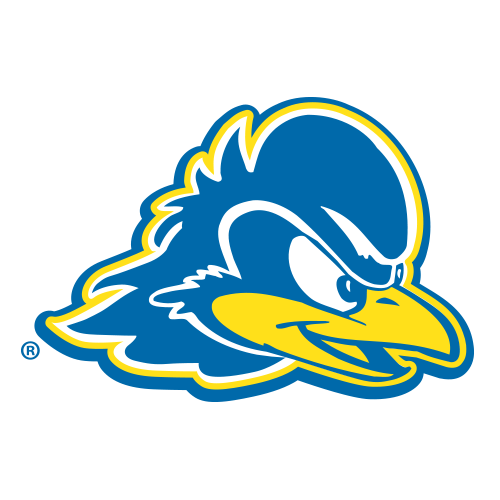 Image result for delaware blue hens