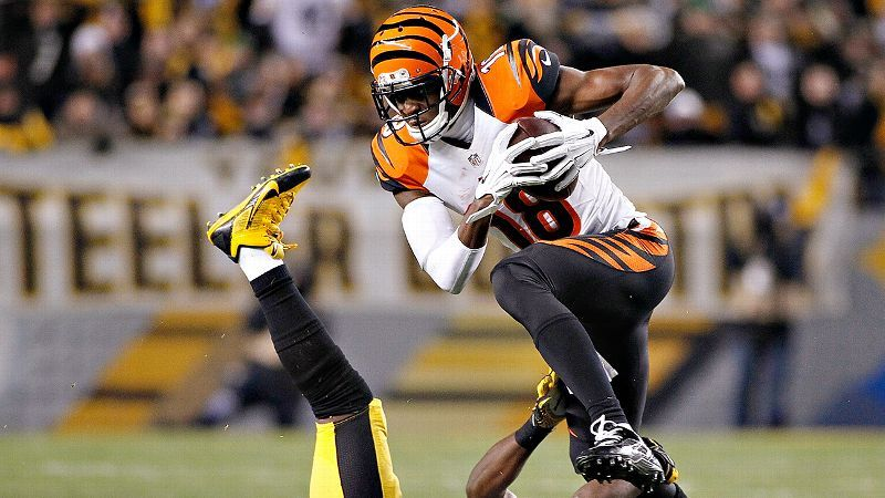 A.J. Green to endow scholarships at UGA