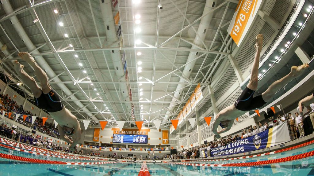 Day 3 of SEC Swim & Dive Championships