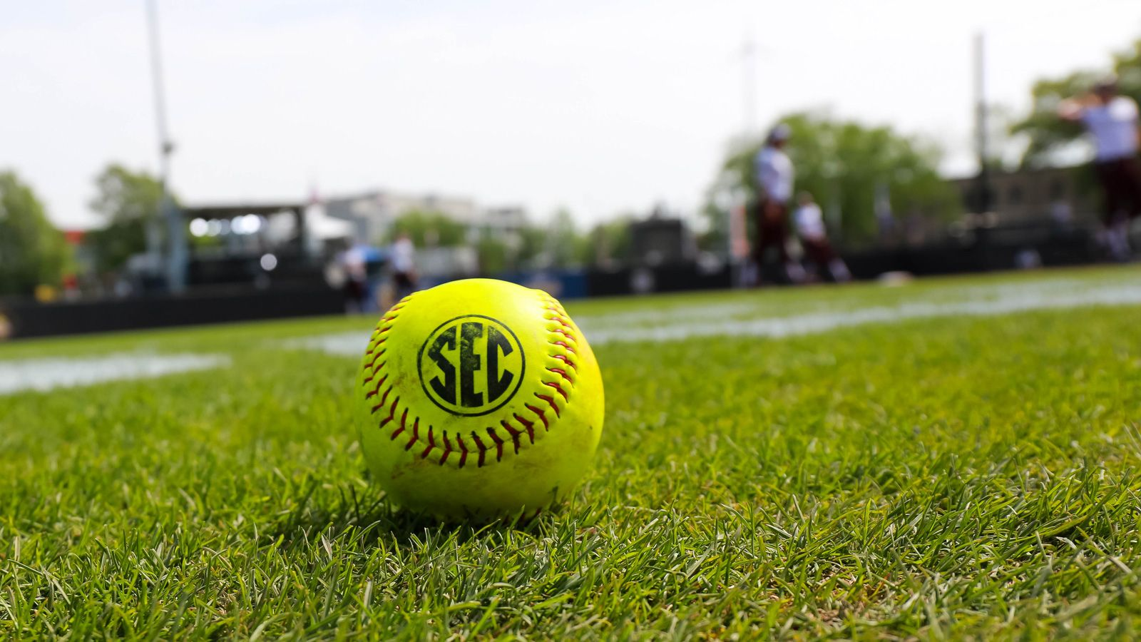 Twelve from SEC named NFCA Division I All-Americans