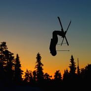 Freestyle Skiing World Cup