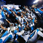 Carolina Panthers are the NFC Champions