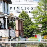 A local view of Pimlico