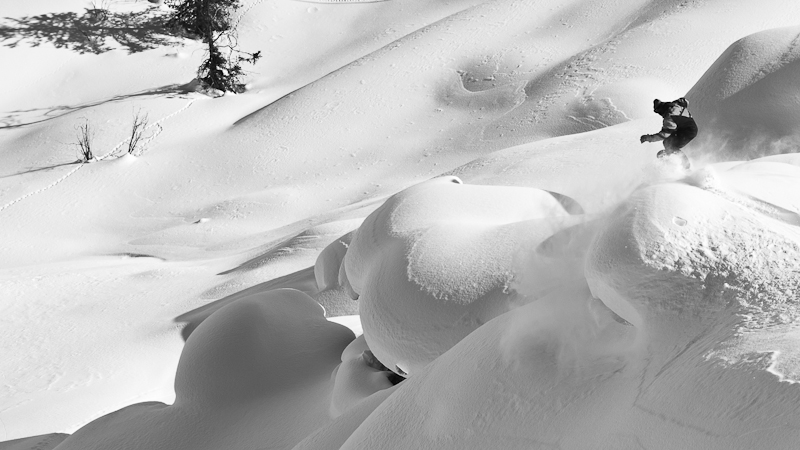 Alaskan Pillows