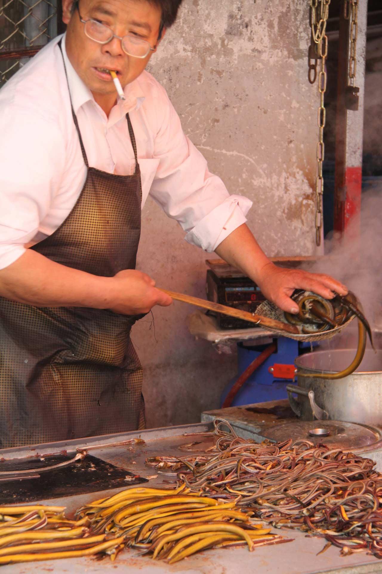 Shanghai Snakes