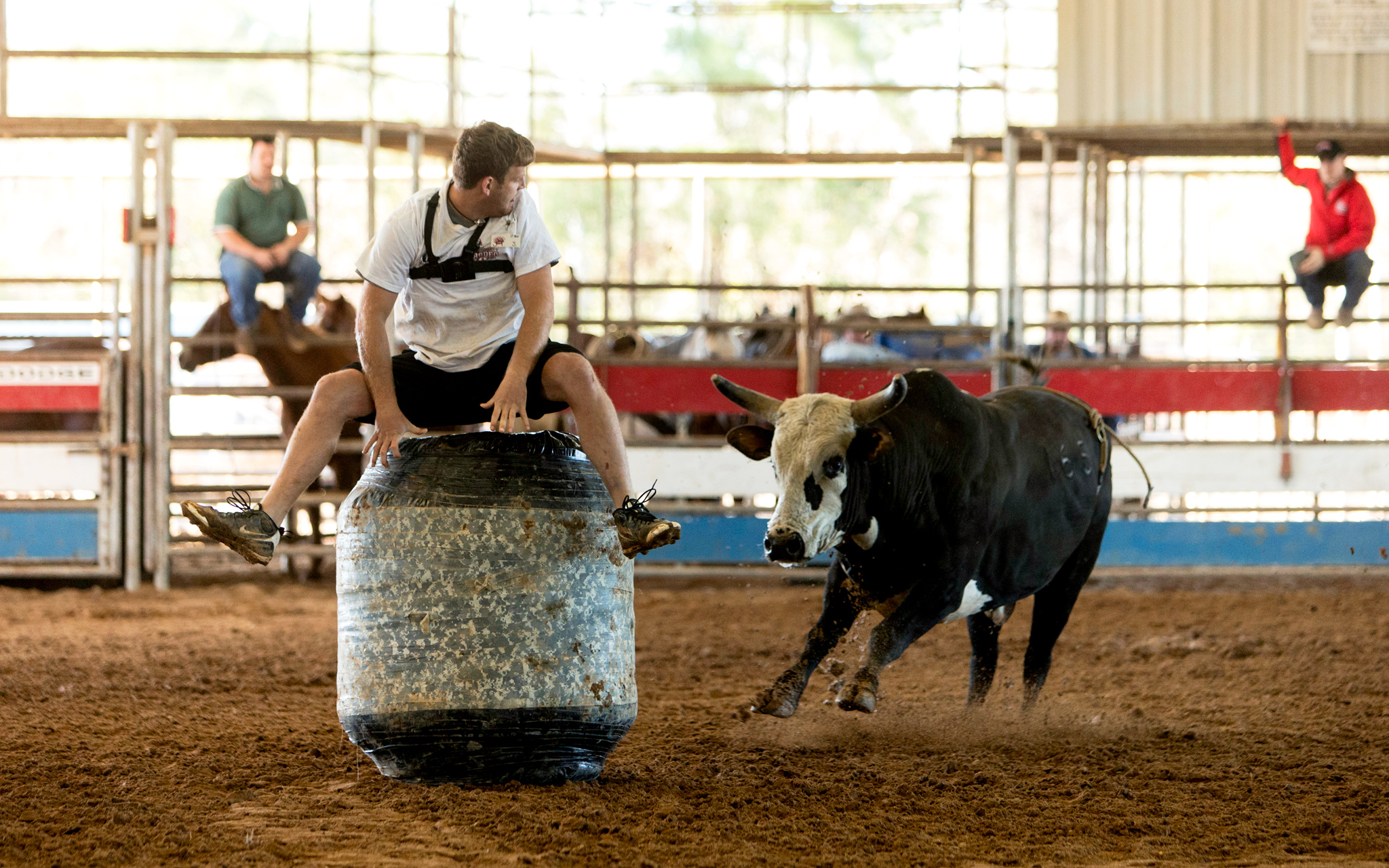 Bull Fighter Training at Sankey Rodeo School