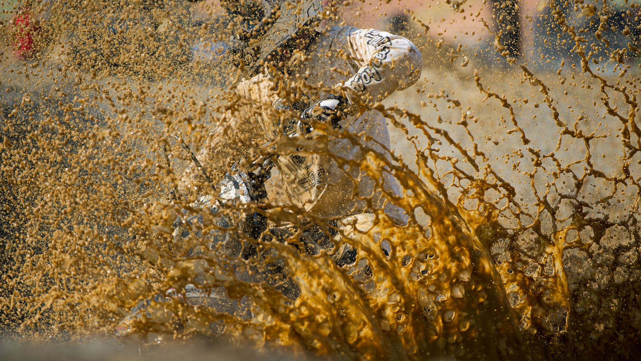 Water Bog