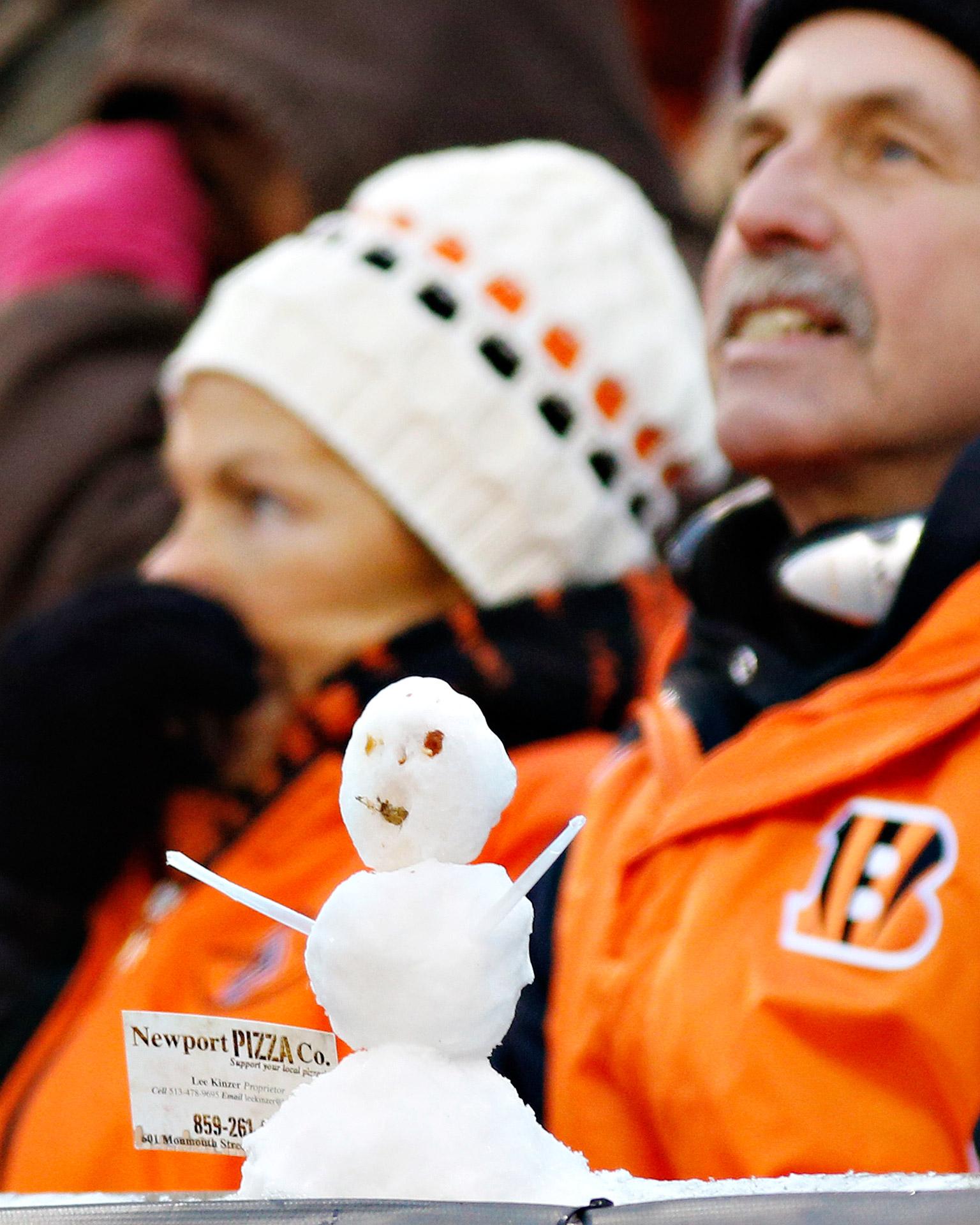 Bengal Snowman