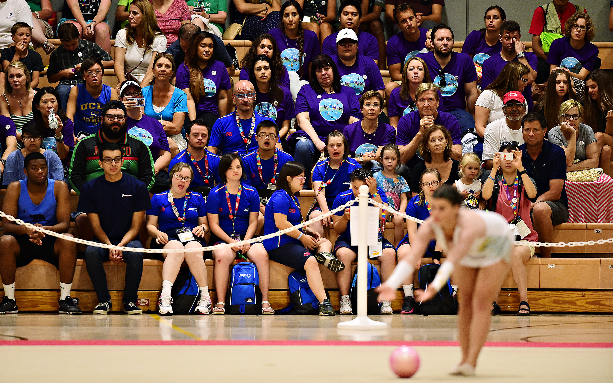 Gymnastics fans