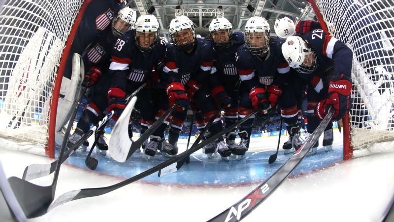 The U.S. women's national team won the silver medal at the 2014 Sochi Olympics.