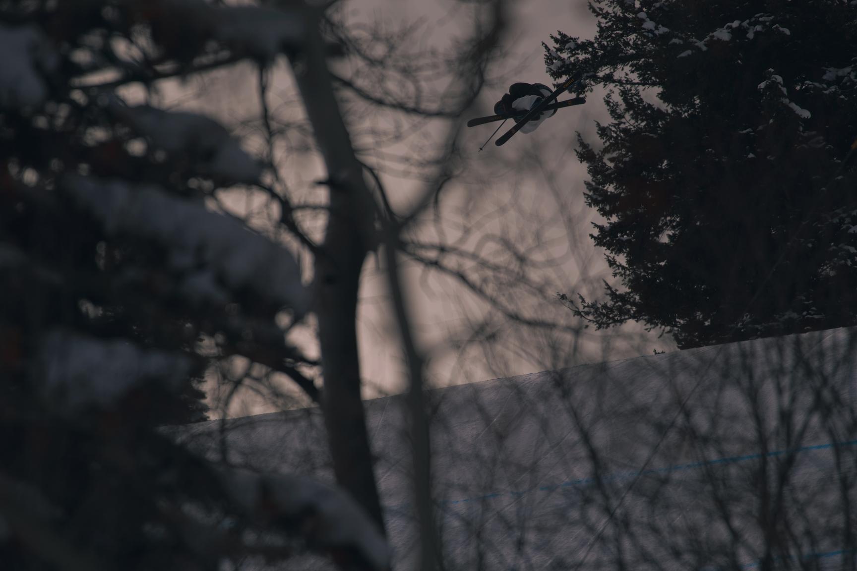 Andri Ragettli, M Ski Slopestyle