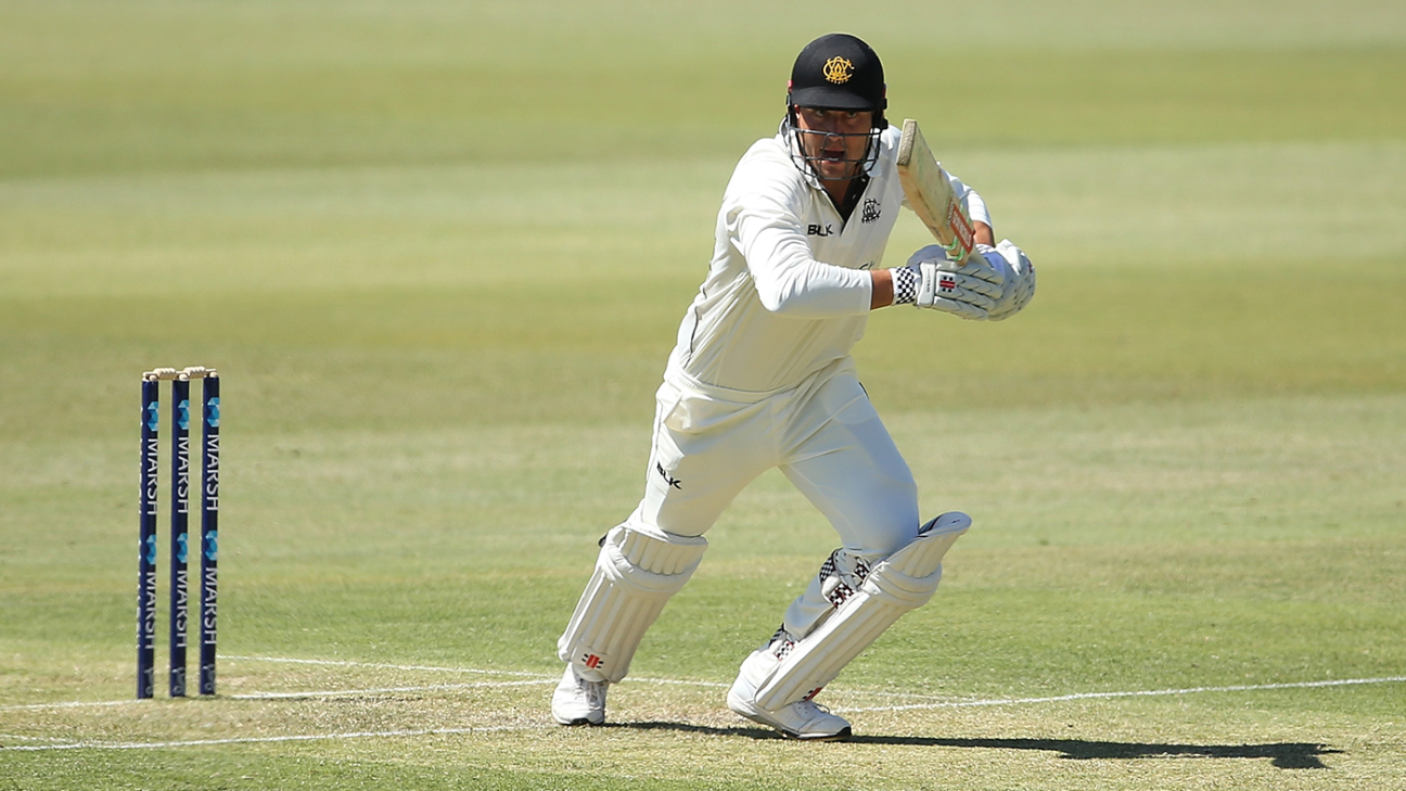 Stoinis and debutant Neil-Smith share honours after fire stops play