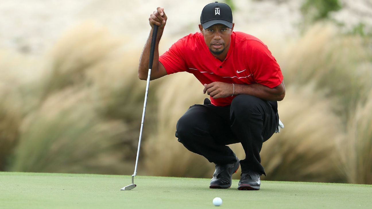 Golf - Tiger Woods f09f8733f