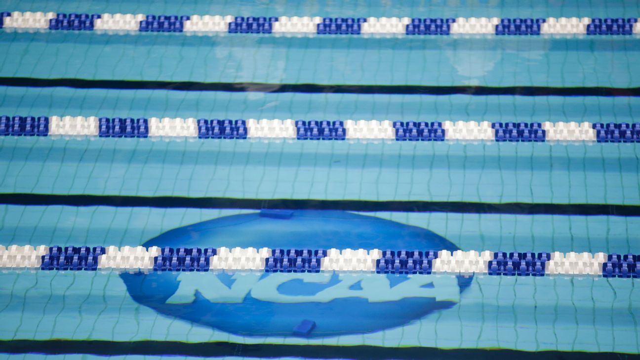 Niagara swim coach Ben Nigro out following sexual harassment lawsuit