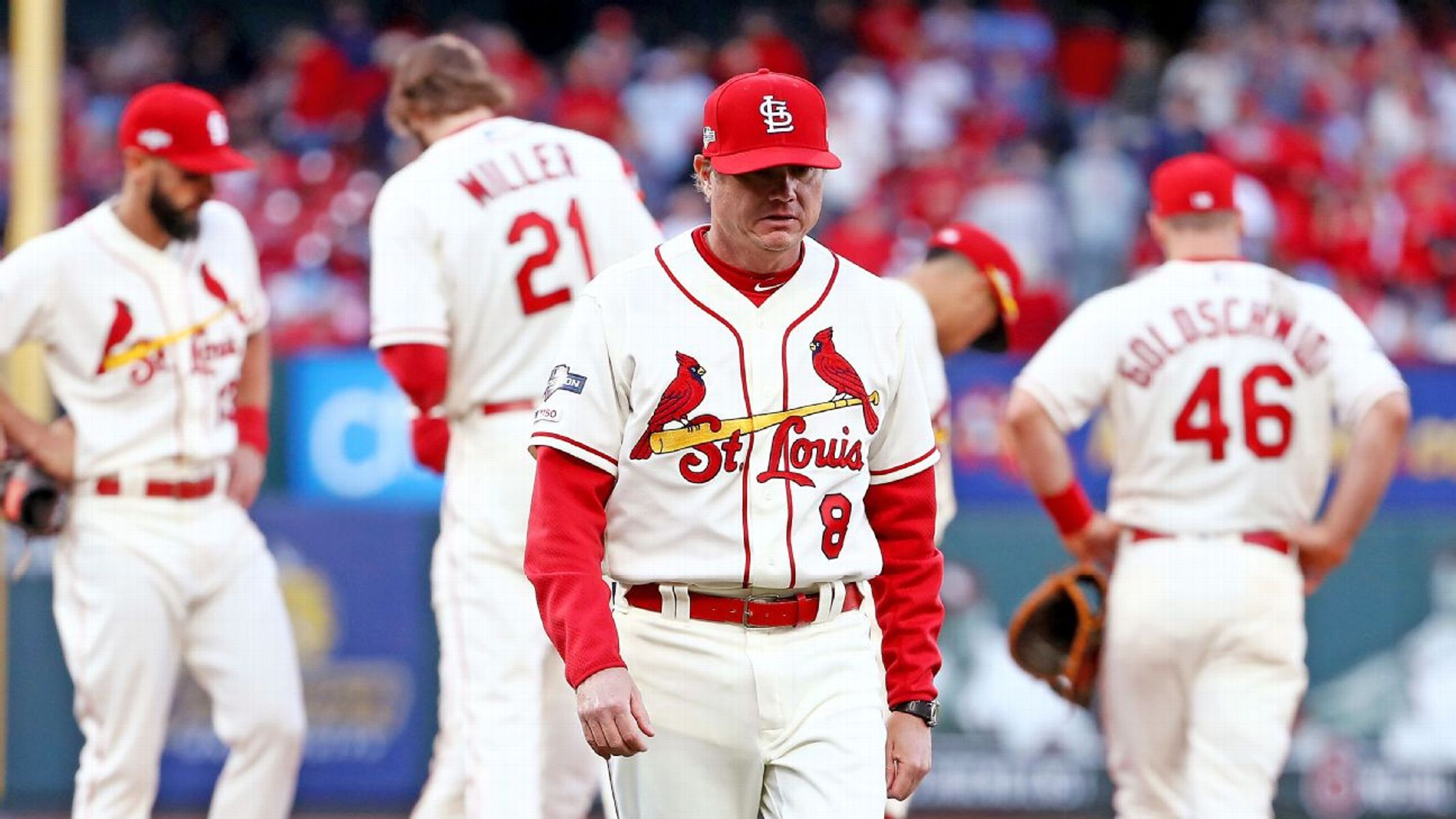 Is Mike Shildt managing his Cardinals out of the NLCS?