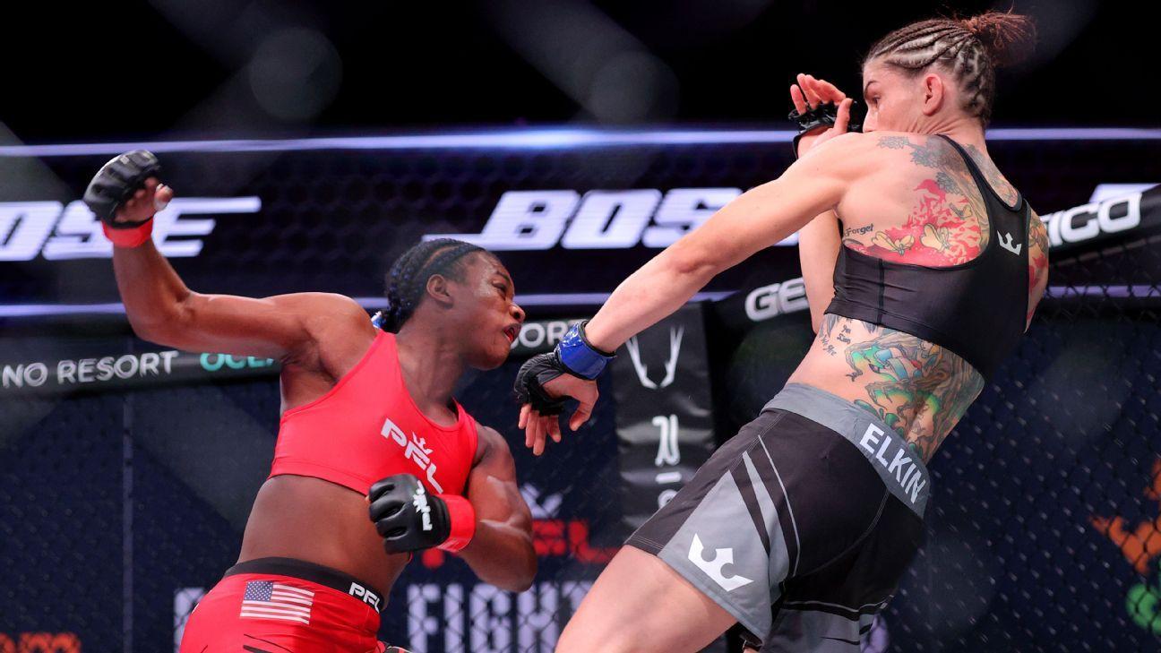 Shields finishes off Elkin by TKO in MMA debut